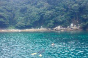 五島・福江島でシュノーケリングを楽しんできました!